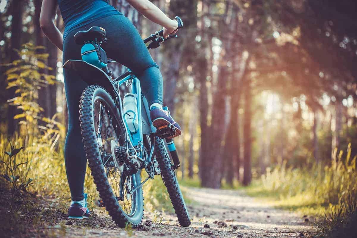 Raleigh Detour 2 Step Thru Review - mybikexl.com